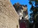 Kolowratská věž
